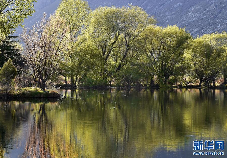 拉鲁湿地:城市湿地风景如画