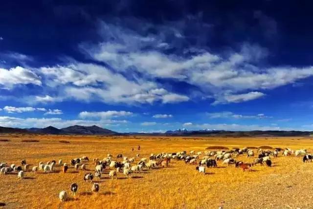 它们是西藏的冷门景点,却是当地人的最爱!