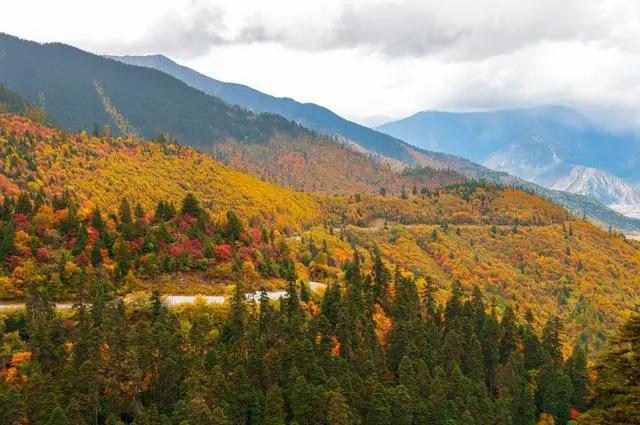 秋天的林芝,被上帝美颜过的地方